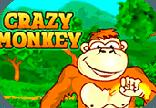 игровые автоматы обезьянки