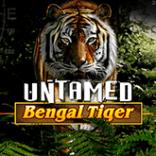 Бенгальский Тигр в онлайн казино